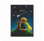 D10-22 - Praktik denný diár 2022 - MALÝ PRINC