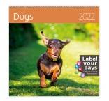 LP02 - Nástenný kalendár, Dogs