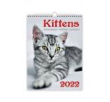N170 - Nástenný kalendár, Kittens/Katzenbabys/Koťátka/Mačičky