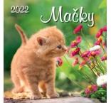 N52-22 - Mačky štvorec 2022 - SG