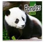 PGP-30114-V - Poznámkový kalendár Pandy 2022, 30 × 30 cm